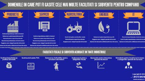 Facilităţi şi subvenţii de care beneficiază companiile din România. Infografic