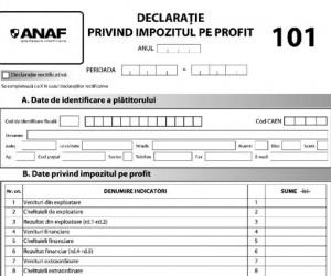 anaf-formular-101-impozit-profit-floteauto