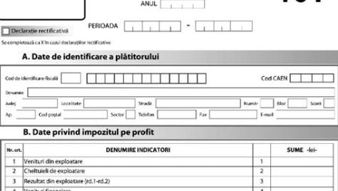 ANAF a modificat Formularul 101, destinat declarării impozitului pe profit anual