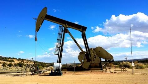 Ministrul Economiei: Preţurile la pompă scad dacă, în Europa, preţul petrolului coboară sub 25 dolari/baril