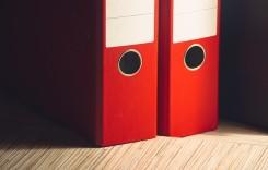 Deloitte va realiza evaluarea societăţii Carpatica Asig