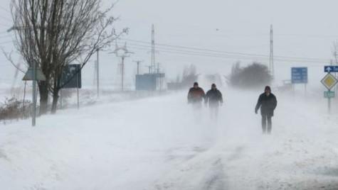 COD GALBEN! Află care sunt județele afectate de ninsori și viscol!
