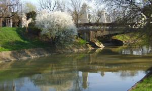 Canal-Bega copy