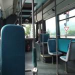 Vicepremier: OUG 51/2019 încalcă dreptul elevilor la transport gratuit