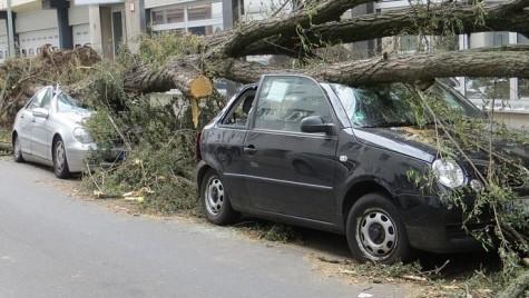 Omniasig a modificat procedura de constatare a daunelor mai mici de 1.000 euro pentru CASCO