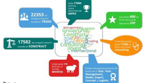 Cele mai populare nume de companii. Peste 22.000 fime folosesc TRANS