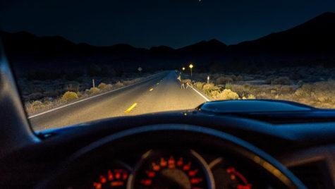 Chiar şi cu farurile aprinse, 70% dintre șoferii au probleme cu vizibilitatea pe timp de noapte