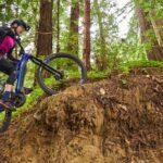 Bicicleta electrică Yamaha – preț și echipare